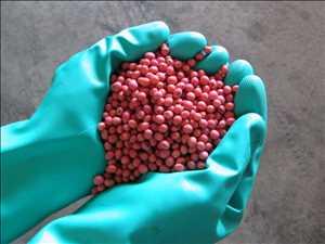 Traitement des semences agricoles