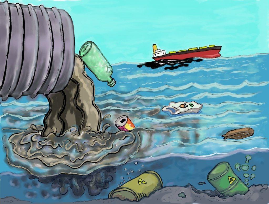 Pollution, poissons morts et silences gênés… En Bretagne, les ravages du lisier de porc dans les rivières