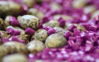 Marché mondial du biopolyamide