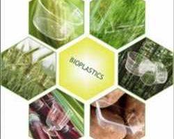 Globale Emballage de biopolymère Marché