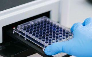 Marché de la thérapie immuno-oncologique