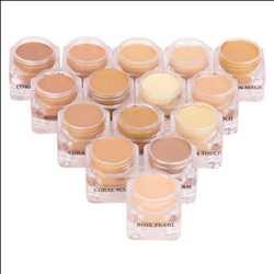 Marché mondial des bases de maquillage
